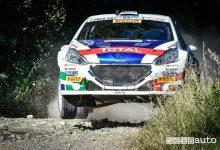 Peugeot 208 T16 Andreucci Rally Adriatico 2018