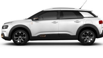 Citroën C4 Cactus Origins