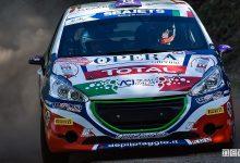 Peugeot Competition Tommaso Ciuffi