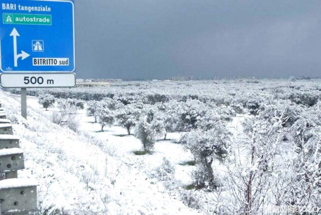 Puglia neve sulle strade in zona Bari e Bitritto dove bisogna rispettare l'obbligo delle catene e dei pneumatici invernali nelle date previste