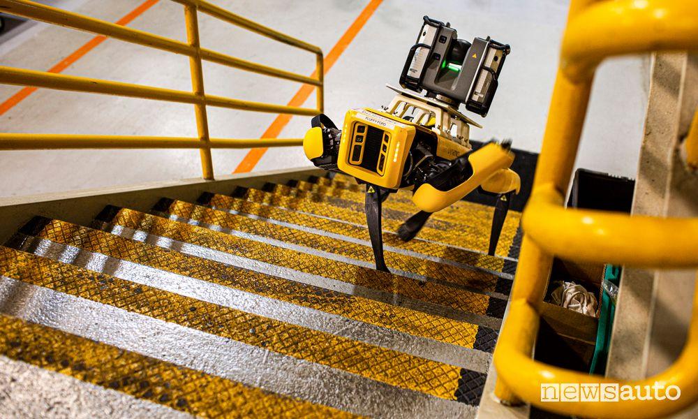Robot a 4 zampe Fluffy Ford mentre sale le scale