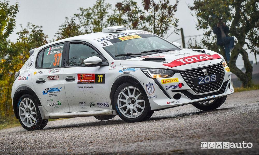 Rally Rue Vally vittoria Peugeot con Andreucci nelle Due Ruote Motrici